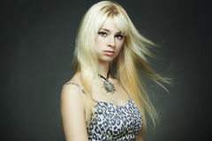 Fashion portrait of the young blonde woman Stock Photography