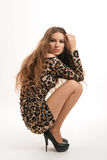 Fashion portrait of young brunette girl in leopard dress Royalty Free Stock Photography