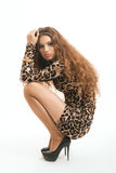 Fashion portrait of young brunette girl in leopard dress Stock Photos