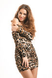 Fashion portrait of young brunette girl in leopard dress Royalty Free Stock Images