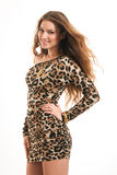 Fashion portrait of young brunette girl in leopard dress Stock Images