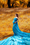 Fashion pregnant girl in autumn Stock Photos
