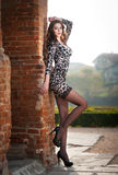 Fashion pretty young woman with long legs posing outdoor near a old brick wall. Beautiful fashionable brunette with tight dress Stock Image