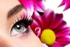 Fashion purple make-up Stock Photography