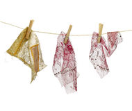Fashion rags. Hanging clothes on cord.White background Stock Photos