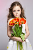 Fashion red-haired girl with tulips in hands. Studio photo on light coloured background. Birthday, holiday, mother`s day, first d royalty free stock photography
