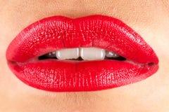 Fashion sensual lips Stock Image
