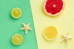 Fashion set of Tropical Fresh Summer citruses. Design. Fruit Citrus. Bright Color. Creative Art. Minimal. Top View. Summer Be royalty free stock photo