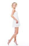 Fashion beautiful woman royalty free stock image