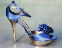 Free Fashion Shoe Stock Images - 26546844