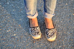Fashion shoes. Leopard print shoes Royalty Free Stock Photography