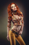 Fashion shot of sexy redhead woman Stock Image