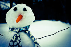 Fashion Snowman Royalty Free Stock Images