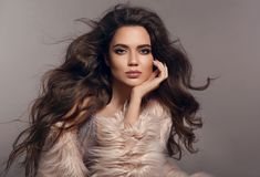 Fashion studio photo of gorgeous brunette woman with long h stock image