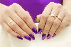 Fashion Style. Violet Nails Manicure. Macro of female hands with nice violet nails manicure Royalty Free Stock Photo