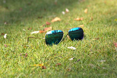 Fashion Summer Accessories in the garden background, Dubai.- 1 September 2017. Fashion sunglasses on the summer garden background, Dubai.- 1 September 2017 stock photography