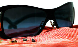 Fashion sunglasses on a red beach towel Stock Images
