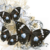 Fashion vector background with butterflies Royalty Free Stock Photography