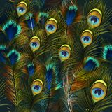 Fashion vector feather pattern blue and green colors Stock Photography