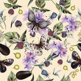 Fashion vector pattern with hand drawn butterflies. And flowers Royalty Free Stock Photo