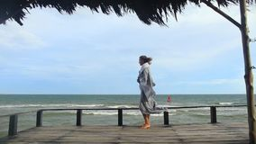 Fashion video portrait of a girl on the sea stock footage