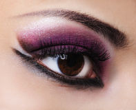 Fashion violet make-up Royalty Free Stock Images