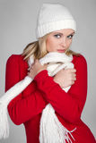 Fashion Winter Woman. Gorgeous fashion winter woman posing Royalty Free Stock Photo