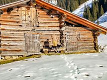 Fashion winter woman ejpying the wooden house in the snow of the alps royalty free stock photo