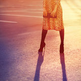 Fashion woman in leopard dress with clutch handbag posing evening on sunset light Royalty Free Stock Image