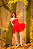 Fashion woman red dress relaxing walking in park Stock Image