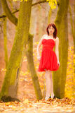 Fashion woman red dress relaxing walking in park Stock Photos