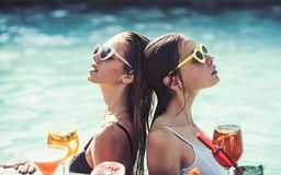 Fashion women with refresh alcohol and fruit in miami. Summer vacation and swimming at sea. Cocktail at girls in pool on stock image