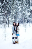 Fashion women in warm sweaters on white snow forest background Stock Photos