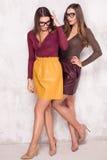 Fashion young models posing. Royalty Free Stock Image