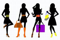Fashionable accessories. Vector illustration of fashionable female accessories Stock Photography