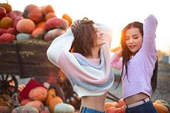 Fashionable beautiful young girlfriends together at the autumn pumpkin patch background. Having fun and posing. Toned in retro style stock images