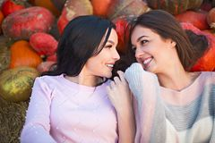 Fashionable beautiful young girlfriends together at the autumn pumpkin patch background. Having fun and posing. Toned in retro style stock photo