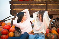 Fashionable beautiful young girlfriends together at the autumn pumpkin patch background. Having fun and posing. Toned in retro style stock photography