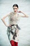 Fashionable beauty Stock Image