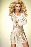 Fashionable blonde lady posing. stock images