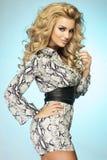 Fashionable blonde lady posing. Royalty Free Stock Photo
