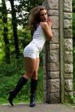 Fashionable Brunette Stock Photography