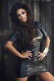 Fashionable brunette beauty posing. Royalty Free Stock Photo