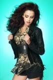Fashionable brunette lady posing Royalty Free Stock Image