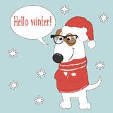 Fashionable dog in Santa hat and sweater. New year card with cute cartoon dog in Santa hat and sweater. Fashionable dog. Vector illustration Stock Photo