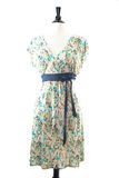 Fashionable dress Stock Photo