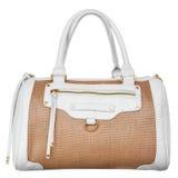 Fashionable female handbag Stock Photos