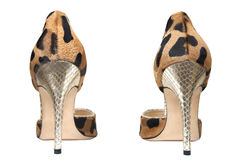 Fashionable female shoes Royalty Free Stock Photography