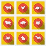 Fashionable flat icons with long shadows types of meat products. Nine animals on a bright background. Royalty Free Stock Photos
