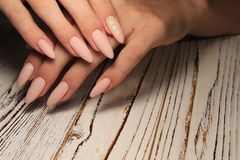 Fashionable french manicure. On beautiful female hands royalty free stock photos